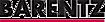 Barentz logo