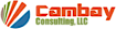 Cambay Consulting logo