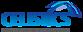 Celistics logo