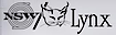 Napoleon/Lynx logo