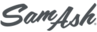 Sam Ash Music Stores logo